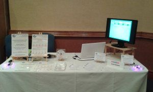 EasyBook at the StayBlackpool 2015 Open Day - Stand Front Shot